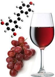 polifenoles en el vino