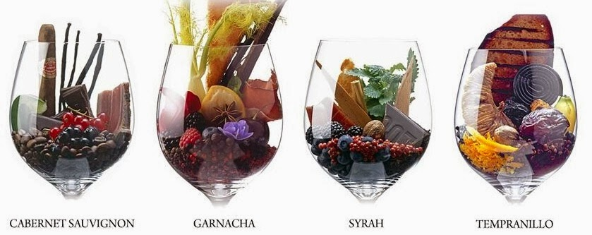 aromas del vino 2